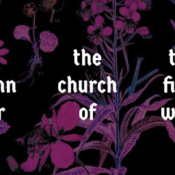 no unity without justice, or, a hymn for the church of the fireweed